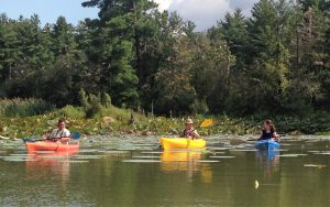 Yellowwood Lake Fall Color Kayak Tour @ Yellowwood Lake